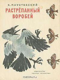 19567.jpeg