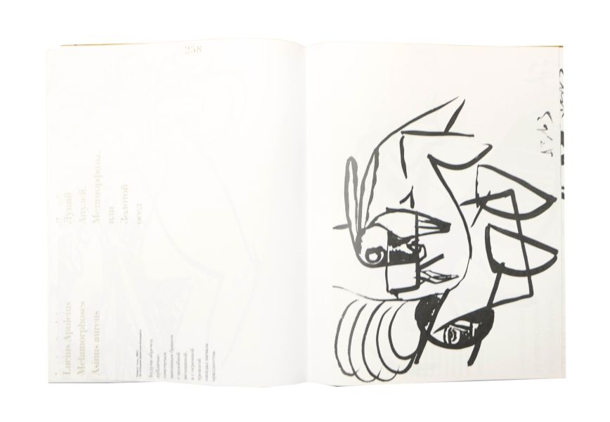 8764.JPG